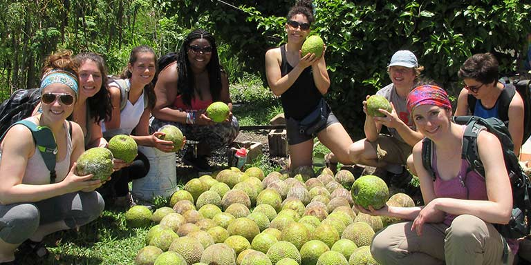 Jamaica program students with fruit in Jamaica